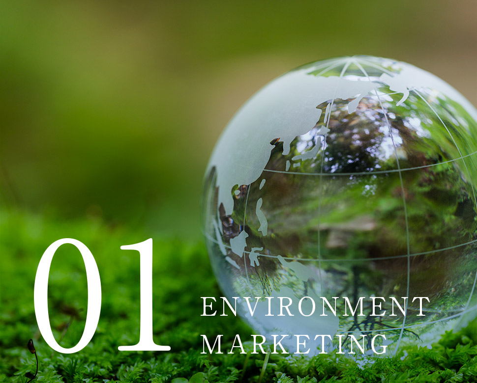 ENVIRONMENT MARKETING